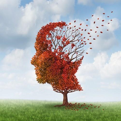 Brain Damage religion