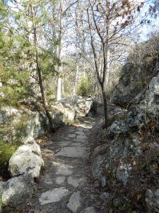 trail to hamilton pool