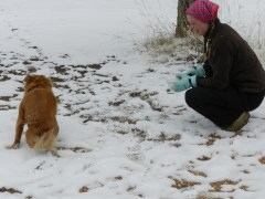 a girl and her dog in the snow