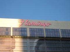 flamingo in vegas