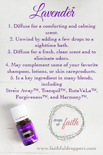 LavenderVertical