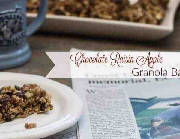 Chocolate Raisin Apple Granola Bars