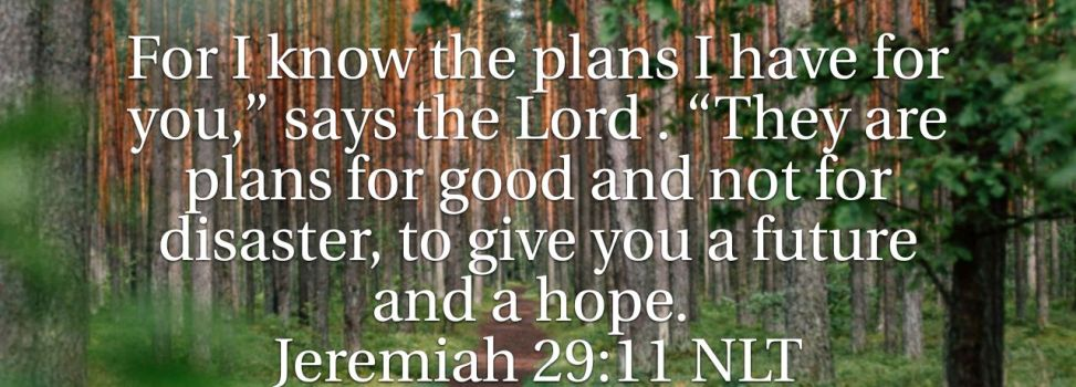 God's Plans, My Hope