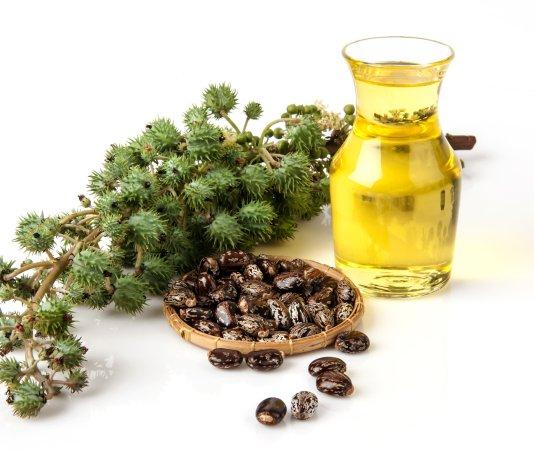 castor oil FAIZA BEAUTY CREAM