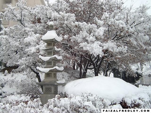 Bercuti di Musim Sejuk di Korea