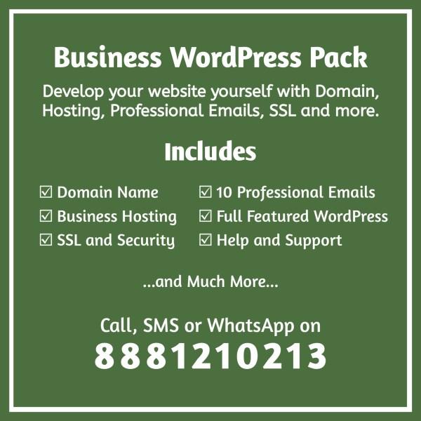 Business WordPress Pack