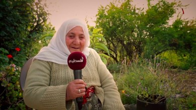 Photo of بلدة وأوف – الحلقة الثانية – جينصافوط – قلقيلية – نابلس