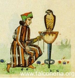 falconiere medioevale