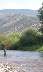 Fly Fishing Utah on the Duchesne River