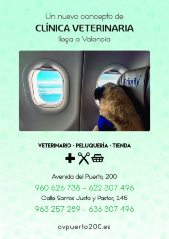 24 CLINICA VETERINARIA