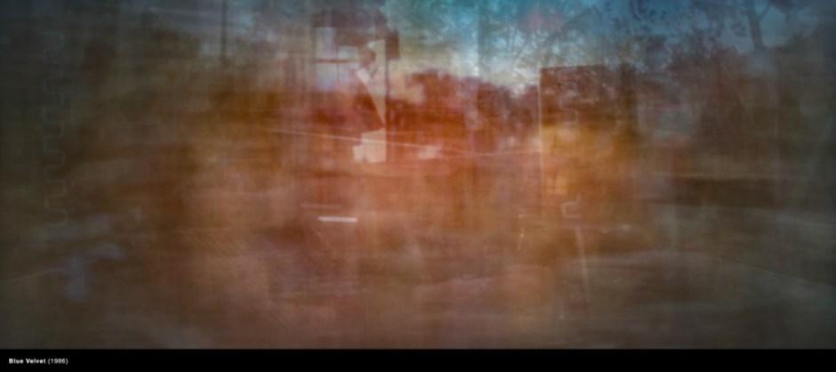 Condensed-Jason-Shulman-Film-Photograph