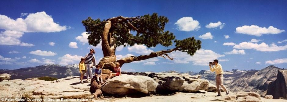 Widescreen-Kodak-Moments-Photograph-Colorama