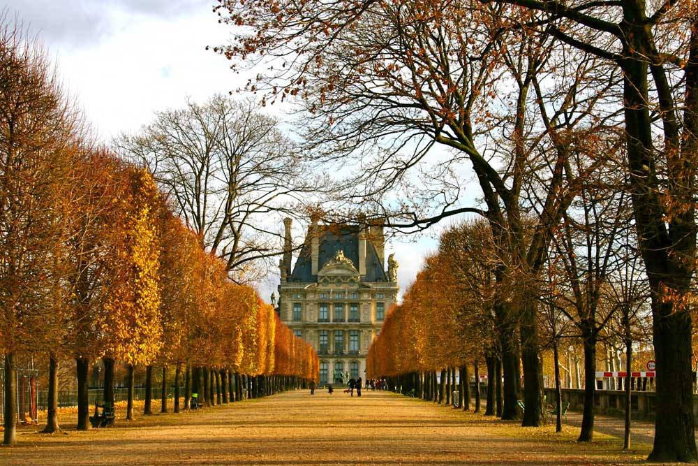 Beautiful Snow Falling Wallpapers Louvre In Fall Falling Off Bicycles