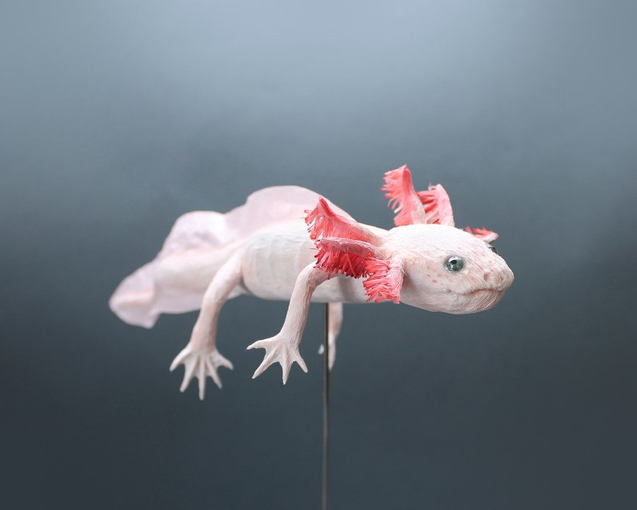 Paper Artwork Axolotl