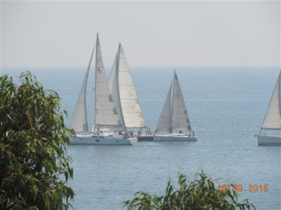 DSCN6176
