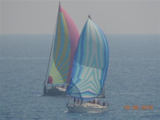 DSCN6278