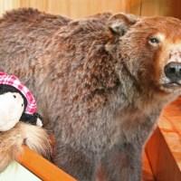 Meine neue Freundin: Grizzlinchen