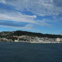 Der Blick auf Wellington bei Einfahrt mit der Fähre in den Hafen