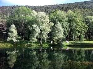 Le lac de St Auban