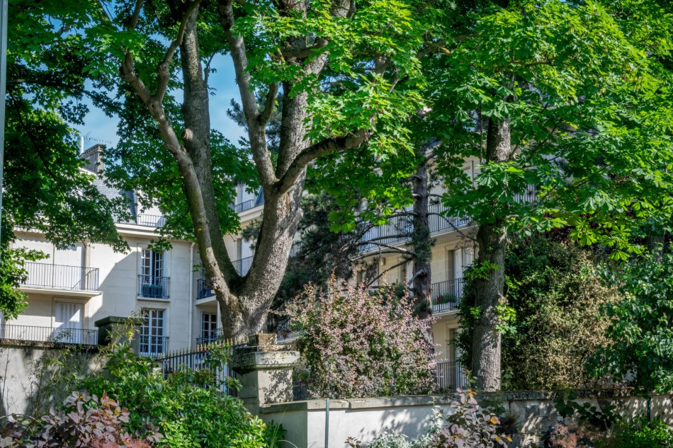 coteaux de Meudon