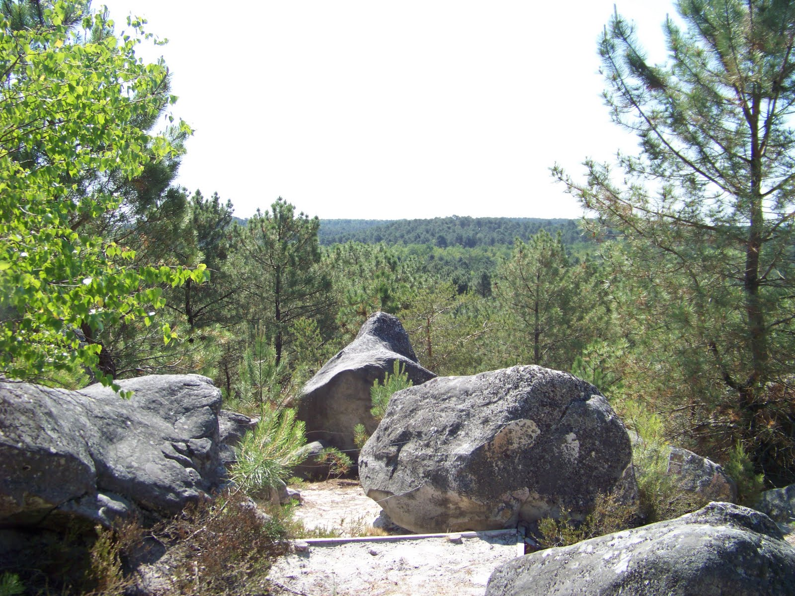 rochers Fontainebleau