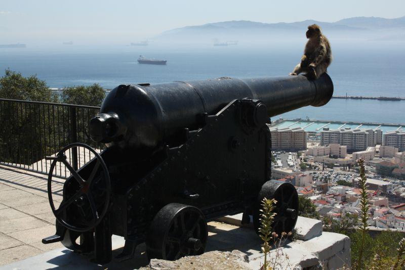 Gibraltar mit Kindern: Lohnt sich ein Tagesausflug?