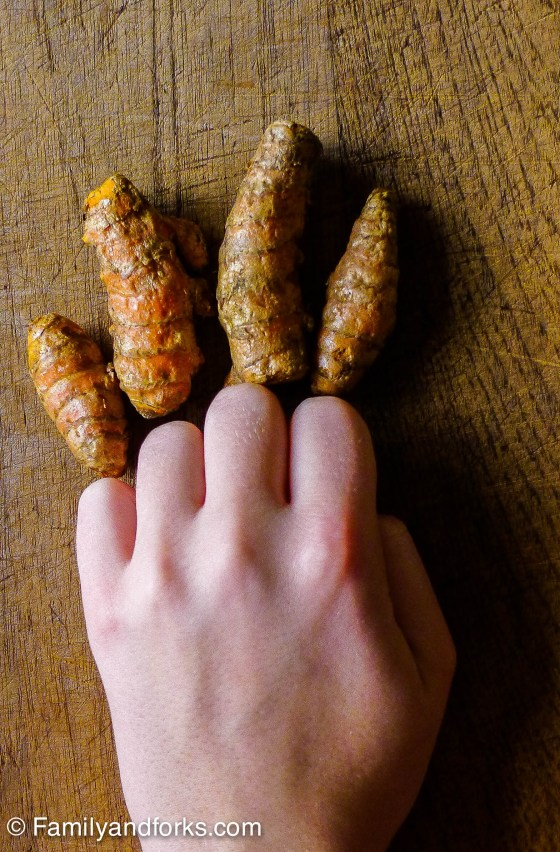 quick-turmeric-curry-paste-vegetable-turmeric-root