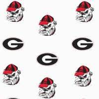 Georgia Bulldogs Crib Comforter - White