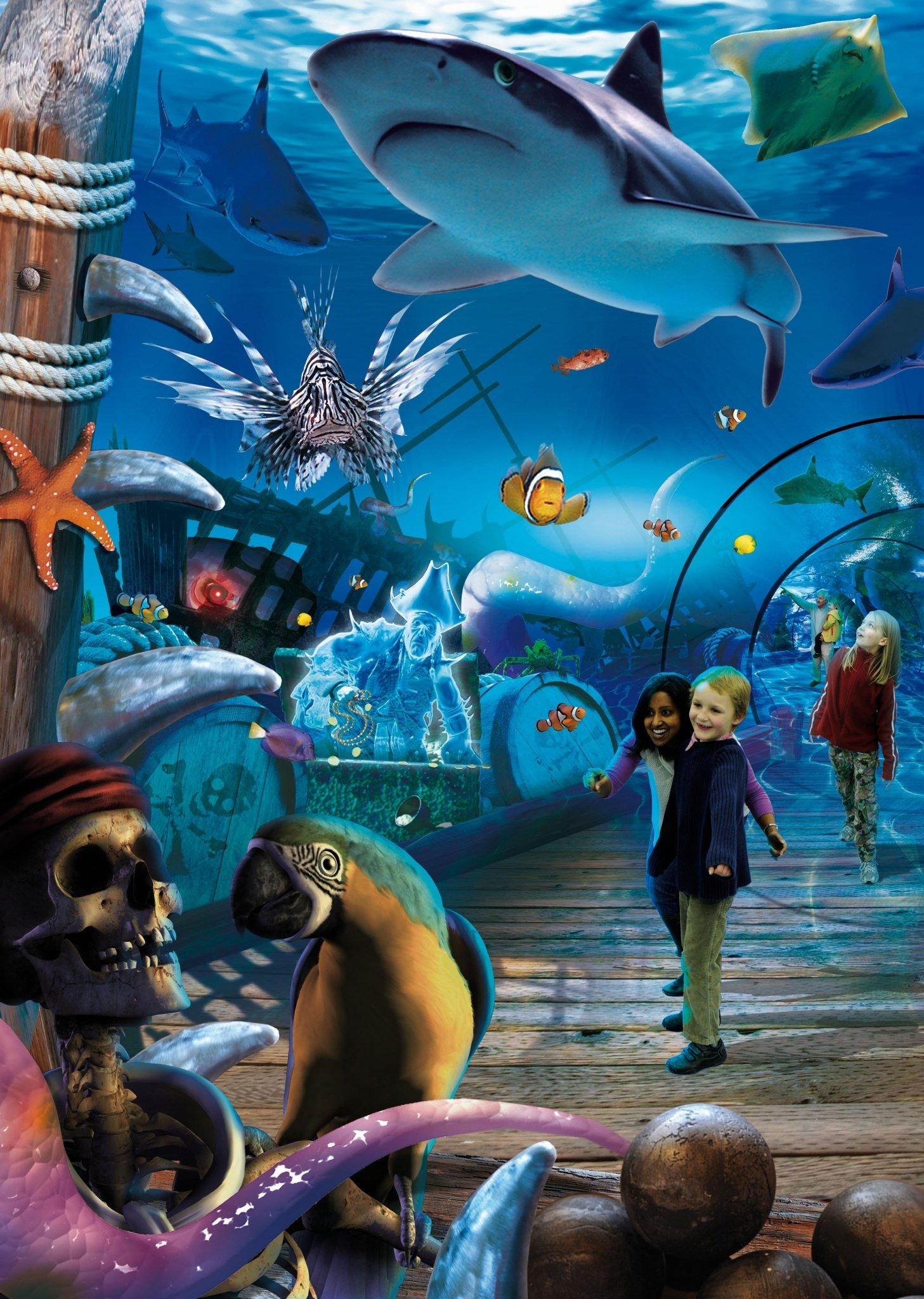 Sharkbait-Reef-Sealife