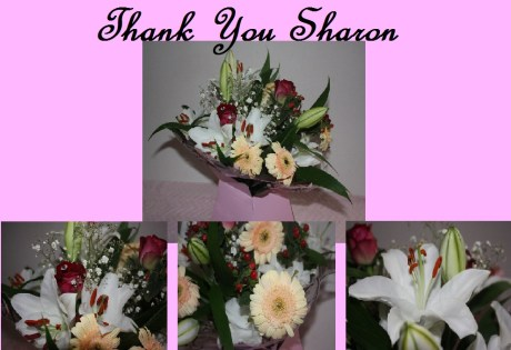 Thank You Sharon Family Clan Blog Flowers
