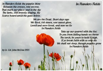 Poppy Day Image2