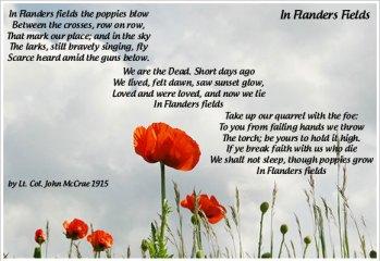 Poppy Day Image2
