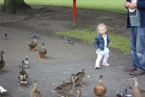 Having fun feeding the ducks