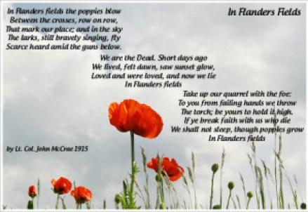 Poppy-Day-Image2-300x206