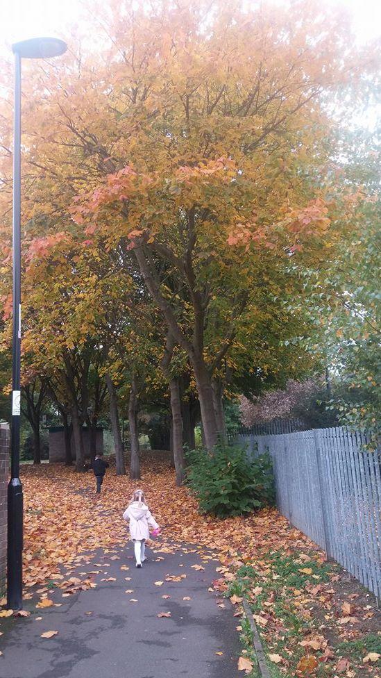 Autumn Sunday Snap Family Clan Blog