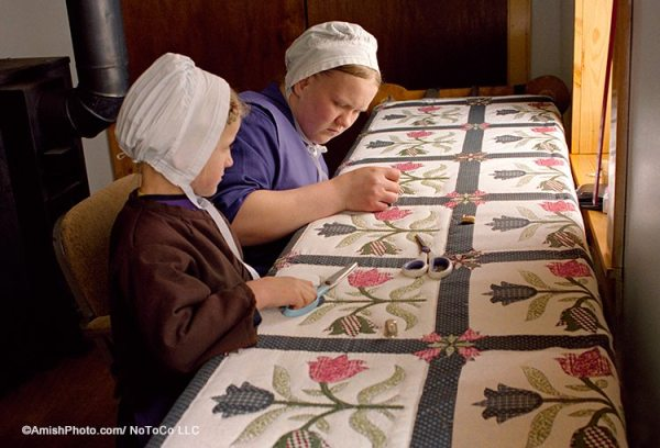 Handmade Amish Quilts and Crafts | Family Farm Handcrafts Shady Maple : quilts amish - Adamdwight.com