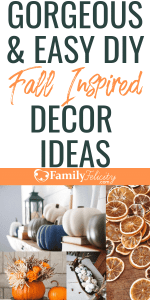 These easy DIY Fall inspired decorations will have your home feeling warm and cozy and ready for the Fall holidays! #Fall #DIY #diyprojects #decor