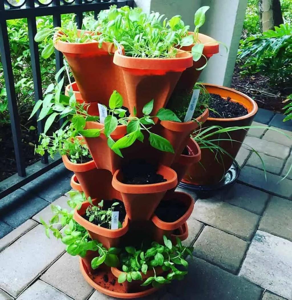 Kitchen Garden Raised Planter