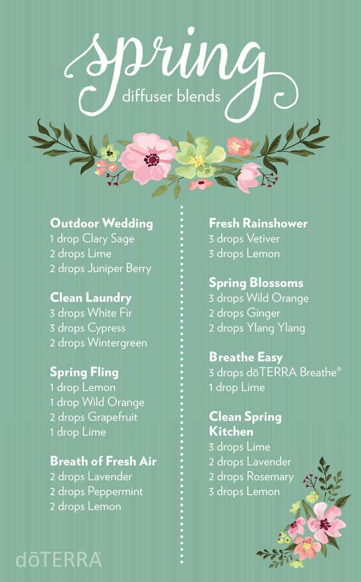doTERRA Diffuser Blends for Essential Oils  Family Food
