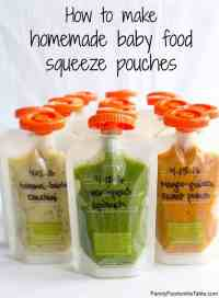 Homemade baby food pouches {how