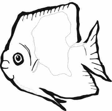 Funny Fish Coloring Pages Collection 2010