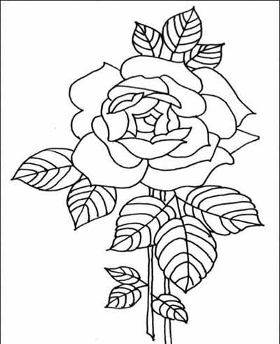 math coloring sheets : Adult Coloring Pages