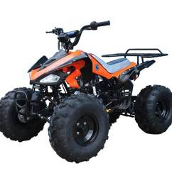 cheetah 110cc atv orange [ 1000 x 1000 Pixel ]