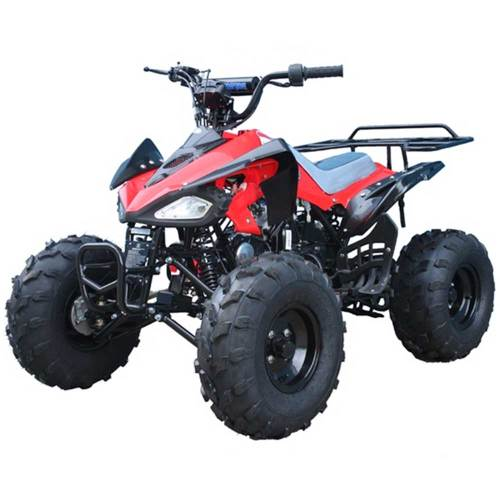 small resolution of fuel filter for 110cc 4 wheeler