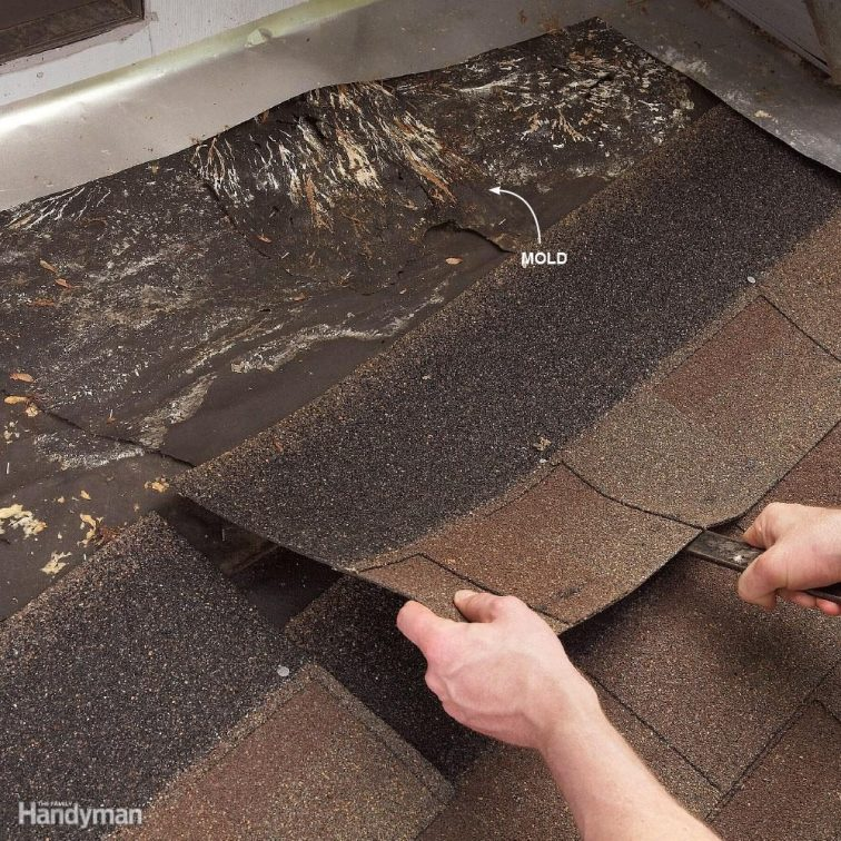 Roof Repair Tips Fix
