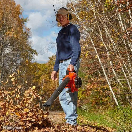 small resolution of is a gas model the best leaf blower for you