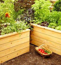self watering garden planter [ 1200 x 1200 Pixel ]