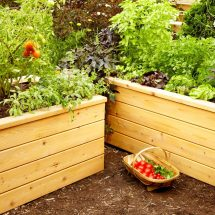 Build Watering Planters Family Handyman