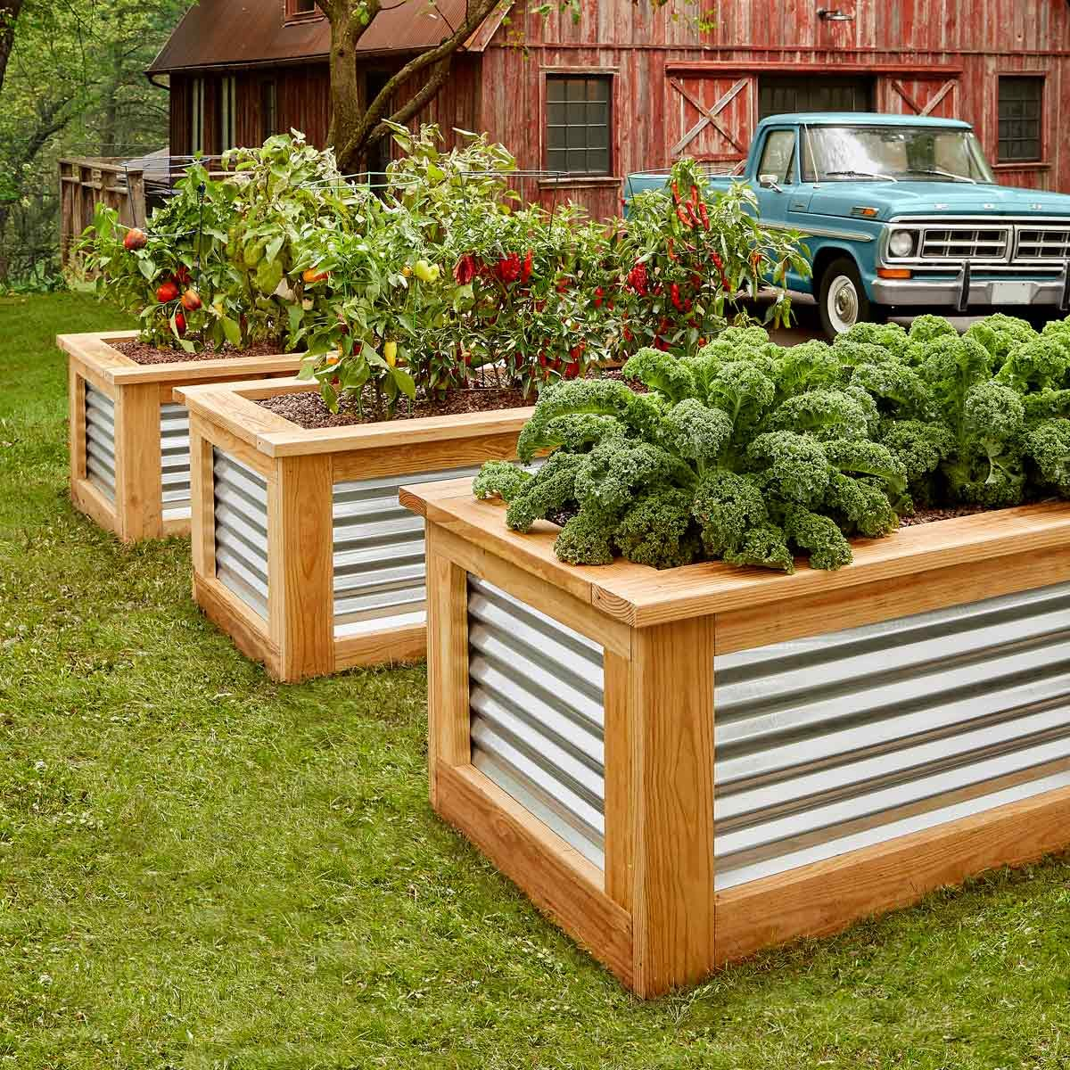 Above Ground Garden Box Designs