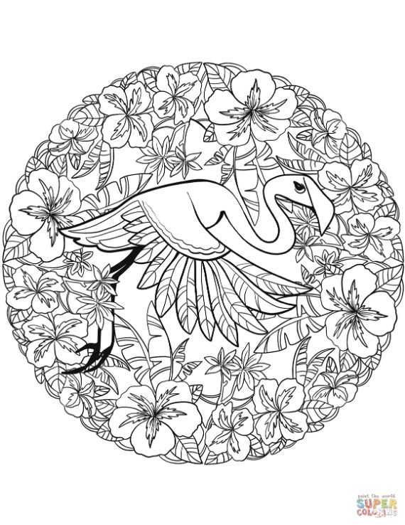 flamingo-mandala-coloring-page